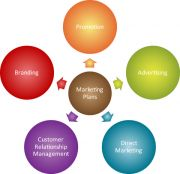 Using Web Analytics to Develop a Solid Marketing Strategy can Increase Profits